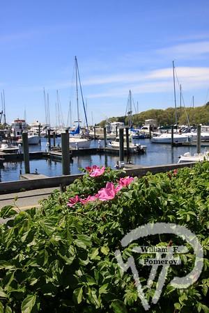 Harwich, MA — Cape Cod