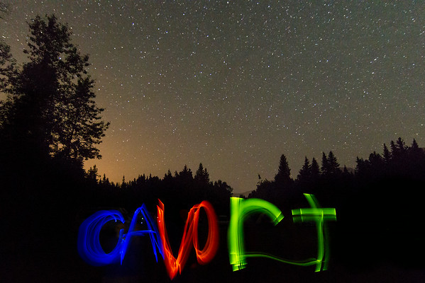 2014 Cavort