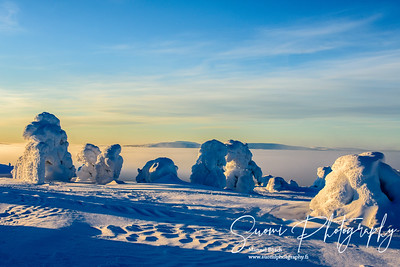Winterwonderland - Levi - Finland