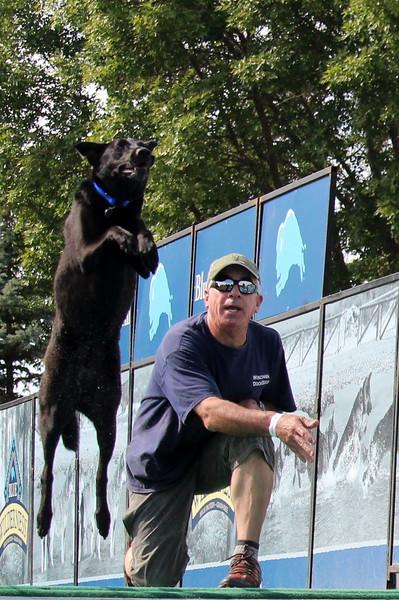 2015.8.6 Winnebago County Fair Dock Dogs (101).JPG