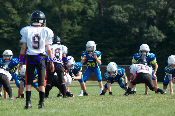 V. Peewee vs. Panthers