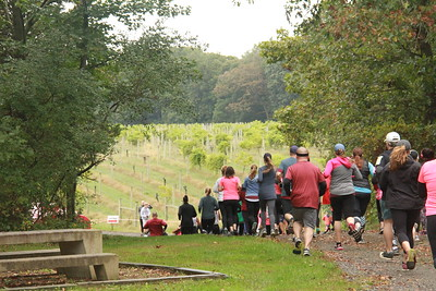 Run the Vineyards - Laurita Winery (Saturday)