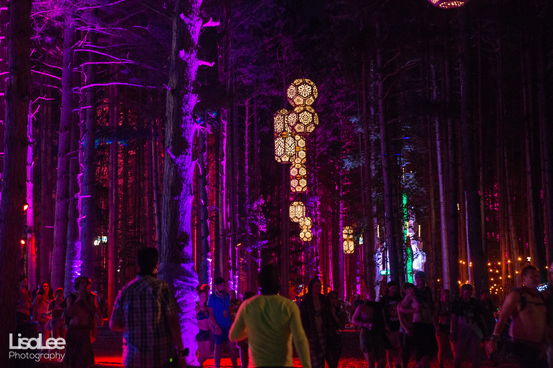 2018-06-30_ElectricForest_15.jpg