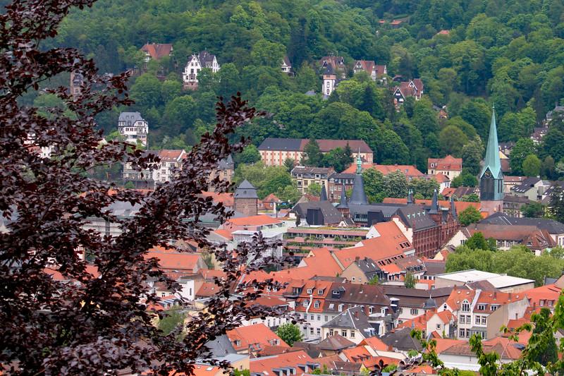 View of Heidelberg from Philosophenweg