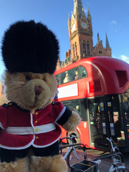 Teddy on Tour