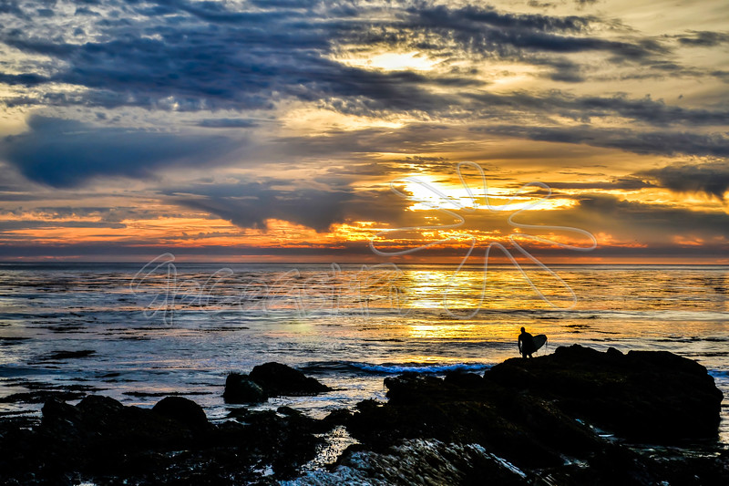 Shell Beach_49