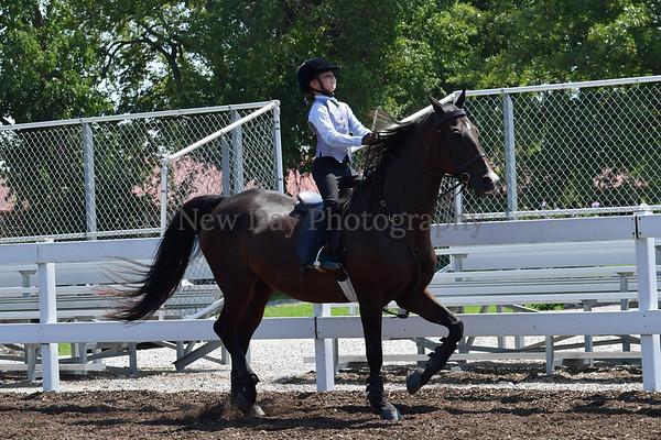 39. Academy Horsemanship WT 8 & Under