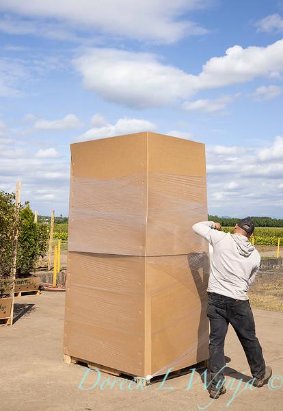 Readying for shipment_5562.jpg