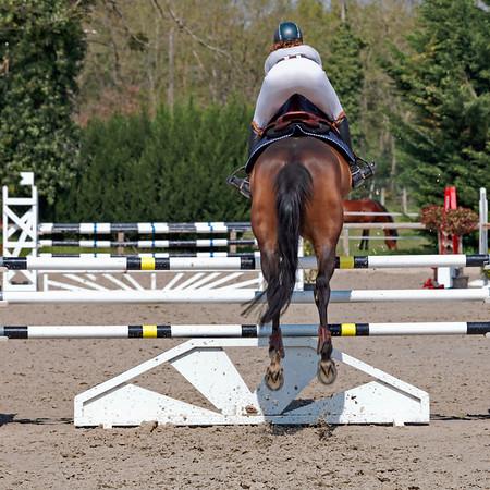 Equitation - Concours de sauts