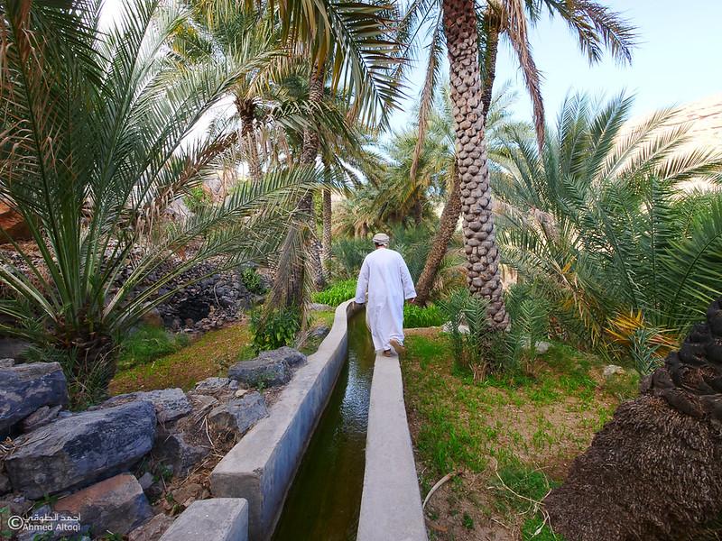 P1211234Al Hamra-Misfat Alabryeen.jpg