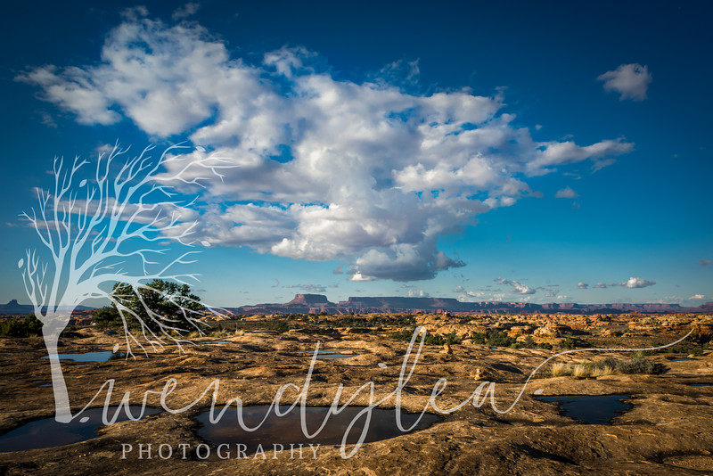 wlc Canyonlands 2015137October 23, 2015.jpg
