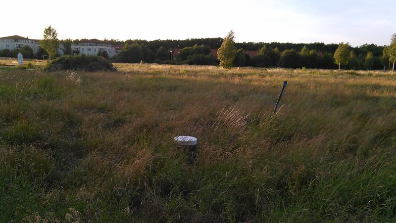 Das Gras wächst auf unserem Grundstück.