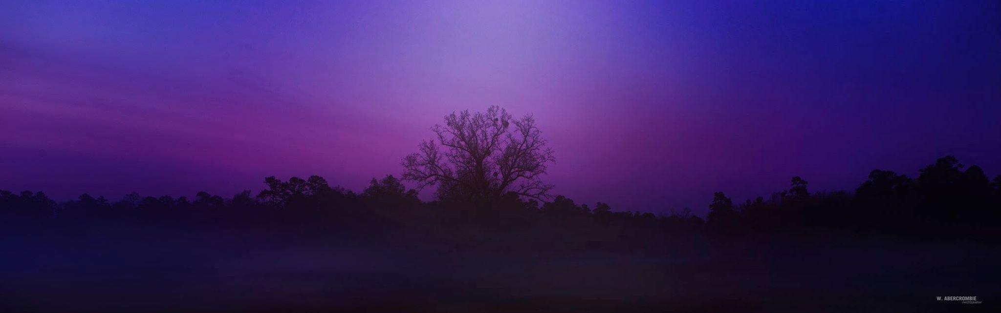 Foggy morning pre-sunrise in Chickamauga, Battlefield