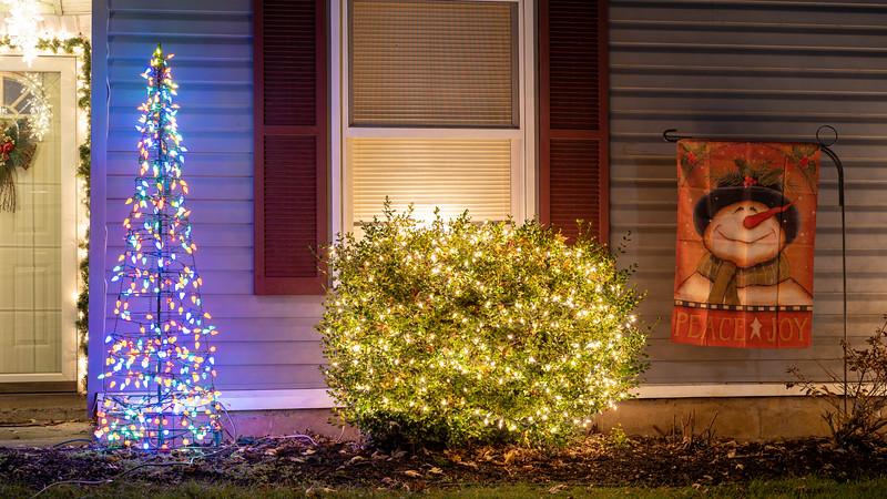 logan-elm-village-christmas-lights-103.jpg