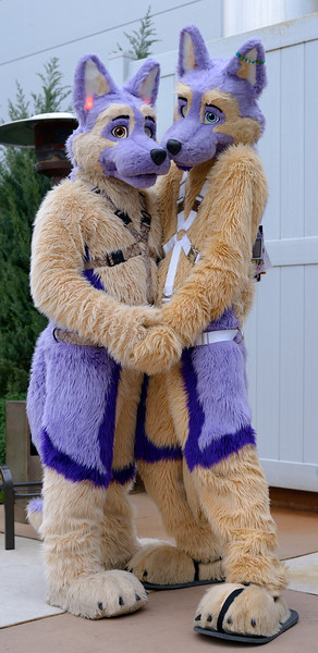 Furry Connection North 2012