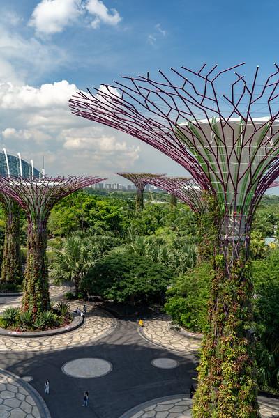 Singapore-19-068.jpg