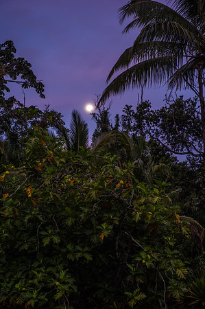 Gary Renard Workshop - Kalani, Big Island 7.12.14