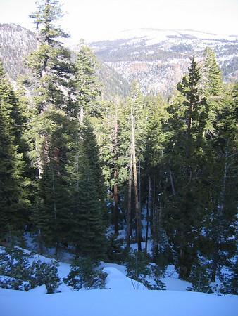 Hiking Hope Valley Jan 2007