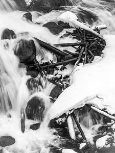 Yellowstone NPLandscape: B&W