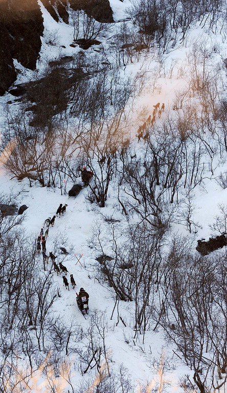 . In this March 3, 2014 photo, a pair of mushers drive their dog teams down the Dalzell Gorge out of the Rainy Pass checkpoint near Puntilla Lake, Alaska, during the 2014 Iditarod Trail Sled Dog Race. (AP Photo/The Anchorage Daily News, Bob Hallinen)