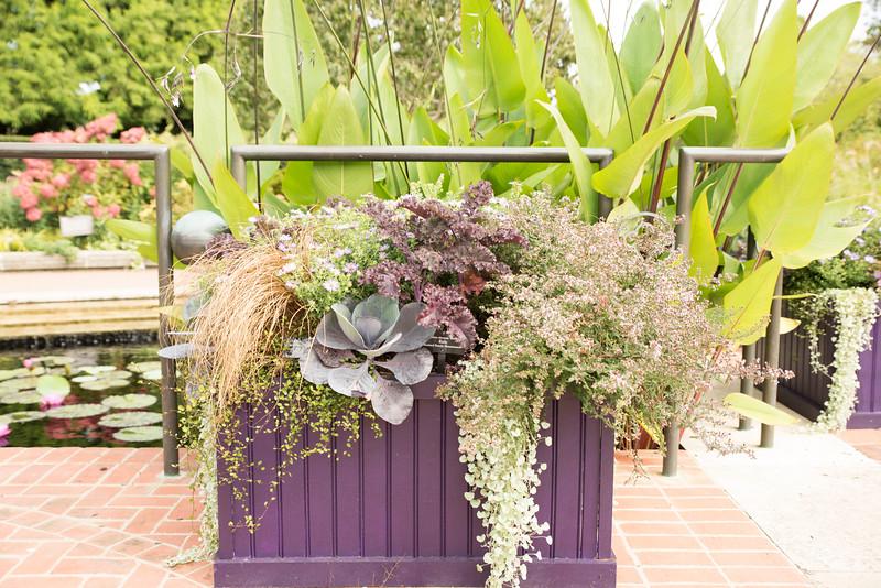 Chicago Botanic Garden 057.jpg