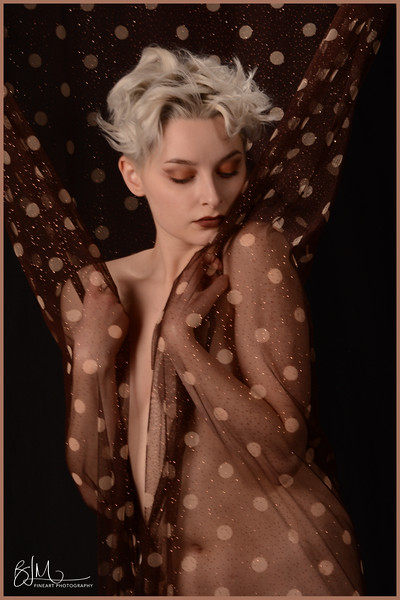 Spotlight Gallery:  Iris Daax