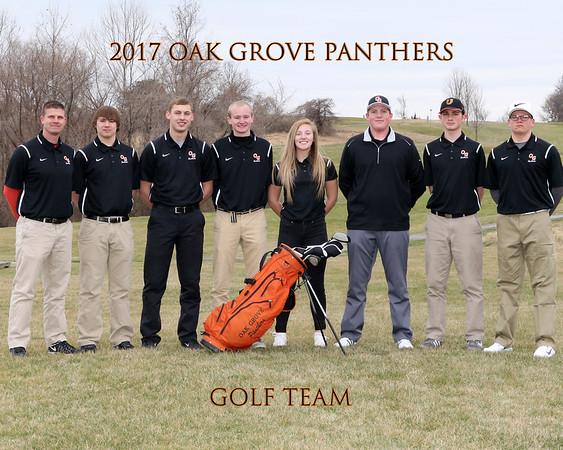2017 OGHS Boys Golf