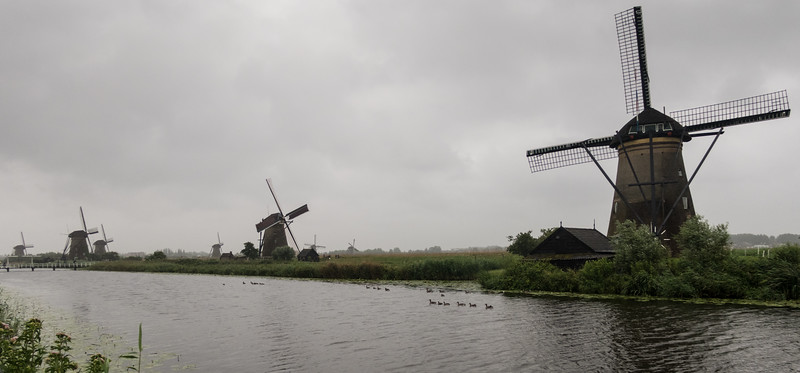 Kinderdijk Netherlands Windmills June 30, 2017  007.jpg