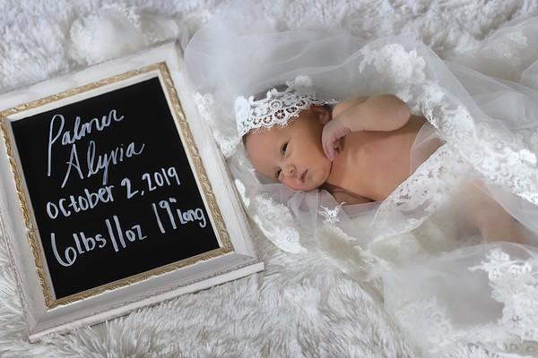 10-06-19 Palmer Alyvia's Newborn Session