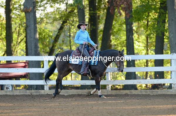 Saturday Ranch Reining Harlansburg