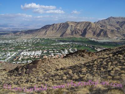Palm Springs Hikes