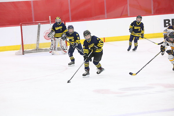 Squirt AA - Chelsea Chiefs
