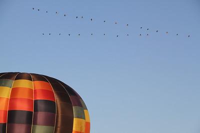 Oswego County Balloon Festival 2014