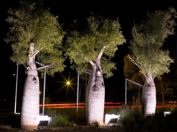 10. Illuminated Boab Trees, by shrinkpictures. 9/12/07, E-300.