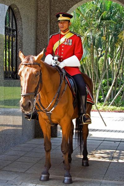 Palace Guard 1.jpg