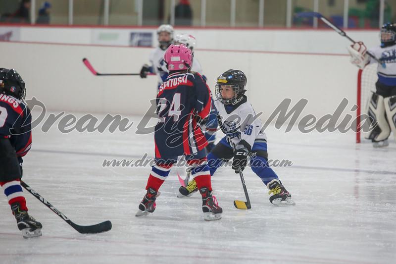 Blizzard Hockey 111719 6962.jpg