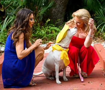 Donna & Tammy @ Humane Society Sarasota