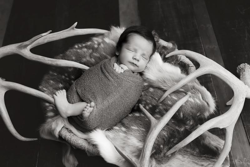 Brooklynn McQueen Newborn Session