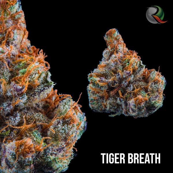 Tiger Breath.jpg