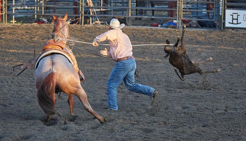 Enumclaw Rodeo 2019 - _15A4504.jpg