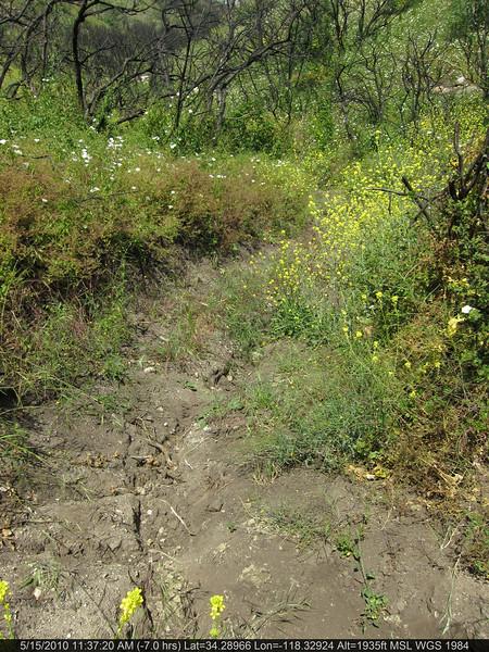 20100515050-Doc Larson Trail Recon.JPG