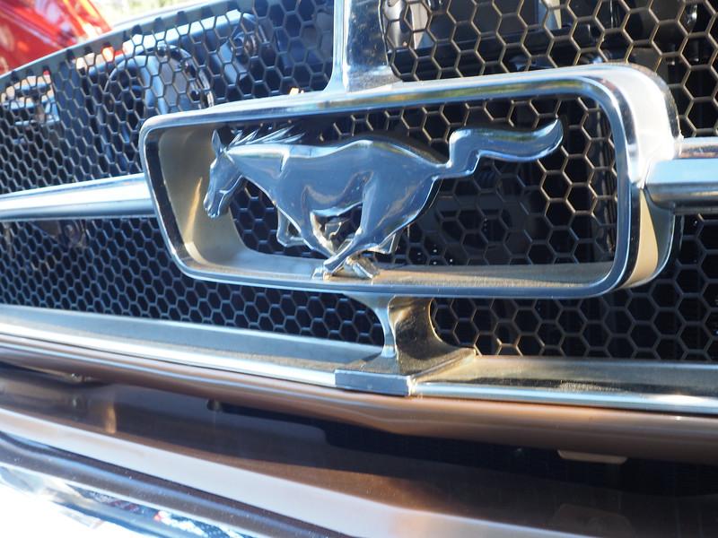 cars 11.jpg