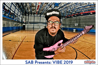 4/11/19 - VIBE 2019