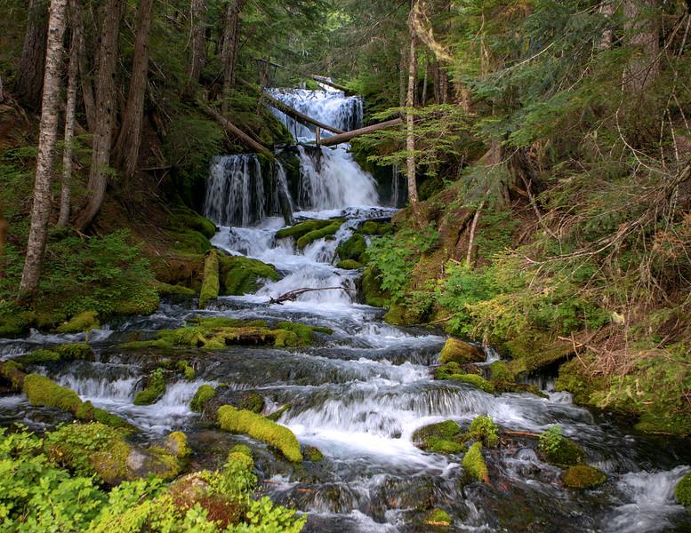 Waterfall_WA_664A7922.jpg