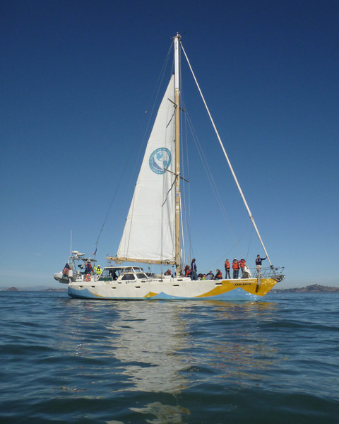 The 64' S/V Ocean Watch, which circumnavigated the Americas (25000 miles) in 2009 to raise awareness of ocean health issues.