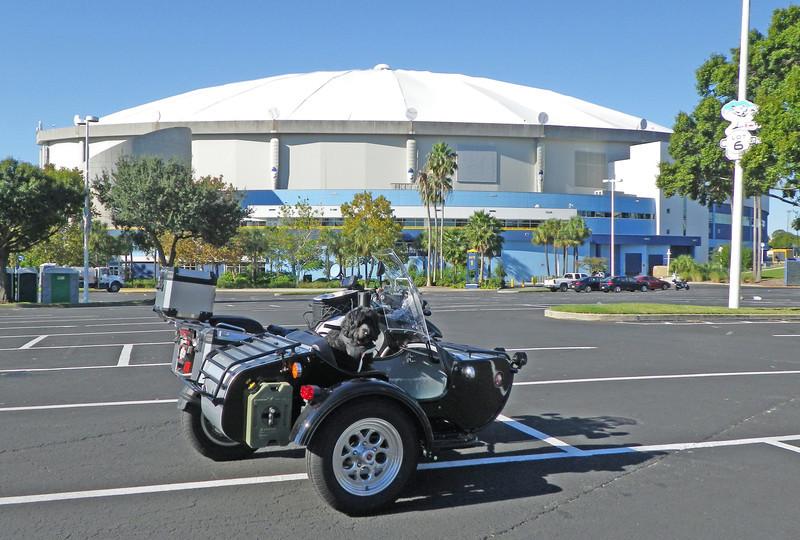 Disco Rays' Dome.JPG