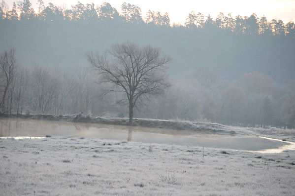 Frost in the Ouachitas