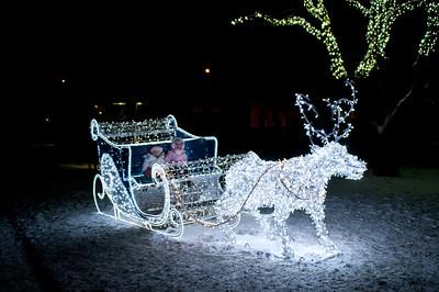 Mowbray Park - Dec 2010