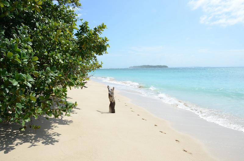 Bocas del Toro Boat Tour 32.jpg