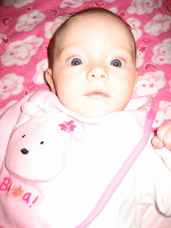 2006 All Photos